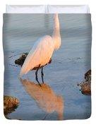 Egret - Dunedin Florida Duvet Cover by Bill Cannon
