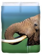 Elephant drinking water Duvet Cover by Johan Swanepoel