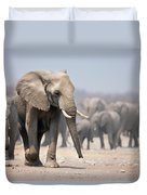 Elephant feet Duvet Cover by Johan Swanepoel