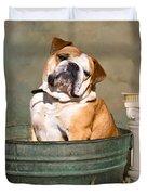 English Bulldog Portrait Duvet Cover by James BO  Insogna