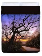 Evening Tree Duvet Cover by Debra and Dave Vanderlaan