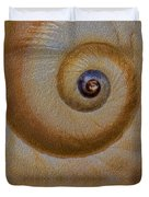 Eye of the Snail Duvet Cover by Susan Candelario