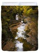 Fall colors Duvet Cover by Eduard Moldoveanu