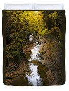 Fall Colors Duvet Cover by Eduard Moldoveanu