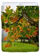Fall Maple Tree In Foggy Park Duvet Cover by Elena Elisseeva