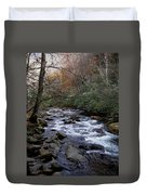 Fall Seclusion Duvet Cover by Skip Willits
