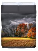 Falling Into Winter Duvet Cover by Lois Bryan