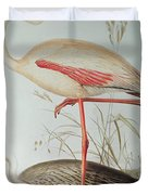 Flamingo Duvet Cover by Edward Lear