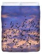Flight Of The Blackbirds Duvet Cover by Darren Fisher
