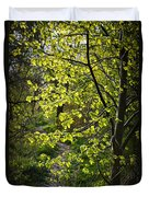 Forest Path Duvet Cover by Elena Elisseeva