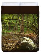 Forest River Duvet Cover by Elena Elisseeva