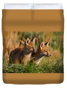 Fox Cubs At Sunrise Duvet Cover by William Jobes