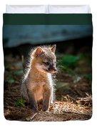 Fox Kit Duvet Cover by Paul Freidlund