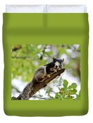 Fox Squirrel Duvet Cover by Cynthia Guinn