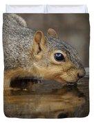 Fox Squirrel Duvet Cover by Lori Tordsen