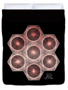 Fractal Fusion Hw Equals Mc Squared Duvet Cover by Jason Padgett