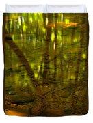 From River Rocks To Forest Reflections Duvet Cover by Adam Jewell