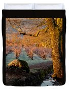 Frost In The Valley Of The Moon Duvet Cover by Bill Gallagher