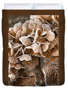 Frosted Hydrangea Duvet Cover by Anne Gilbert