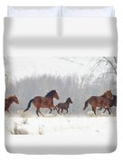 Frozen Track Duvet Cover by Mike  Dawson