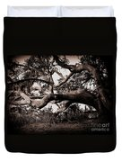Gnarly Limbs At The Ashley River In Charleston Duvet Cover by Susanne Van Hulst