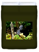 Grape Harvest Duvet Cover by Neal  Eslinger