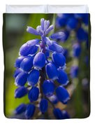 Grape Hyacinth Duvet Cover by Adam Romanowicz