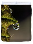 Grape Leaf with Rain Drop Duvet Cover by Cindi Ressler