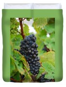 Grapes Duvet Cover by Hannes Cmarits