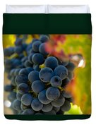 Grapes On The Vine Duvet Cover by Bill Gallagher