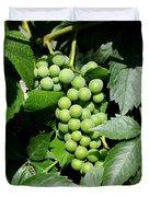Grapes On The Vine Duvet Cover by Carol Groenen