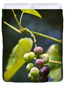 Grapes On The Vine Duvet Cover by Christina Rollo