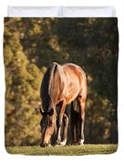 Grazing Horse At Sunset Duvet Cover by Michelle Wrighton