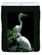 Great Egret Pair Duvet Cover by Skip Willits