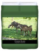 Greater Kudu Duvet Cover by Chris Flees