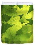 Green maple leaves Duvet Cover by Elena Elisseeva