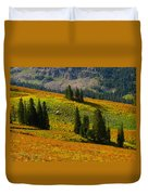 Green Mountain Trail Duvet Cover by Raymond Salani III