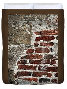 Grunge Brick Wall Duvet Cover by Elena Elisseeva