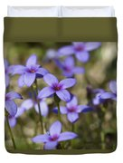Happy Tiny Bluet Wildflowers Duvet Cover by Kathy Clark