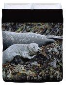 Harbor Seal Pup Resting Duvet Cover by Suzi Eszterhas