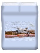 Harbour Seals Lounging Duvet Cover by Sharon Talson