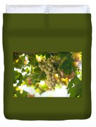 Harvest Time. Sunny Grapes Iv Duvet Cover by Jenny Rainbow