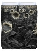 Haunting Sunflowers Field 3 Duvet Cover by Dave Dilli