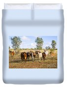 Herd Of Brahman Cattle In Outback Queensland Duvet Cover by Colin and Linda McKie