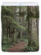 Heritage Forest Duvet Cover by Randy Hall