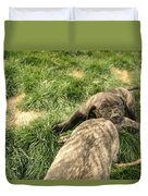 Hey You Come Back Here Buddy Duvet Cover by Jeff Swan