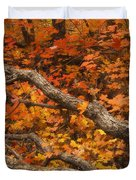 Holding Back Duvet Cover by Peter Coskun