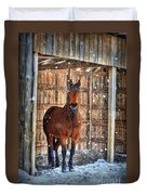 Horse And Snow Storm Duvet Cover by Dan Friend