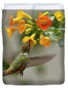 Hummingbird Sips Nectar Duvet Cover by Heiko Koehrer-Wagner