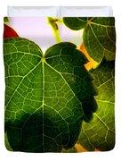 Ivy Light Duvet Cover by Chris Berry